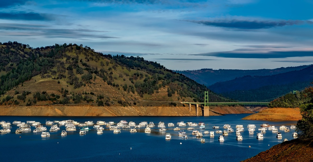 Giving a Dam(n) forOroville